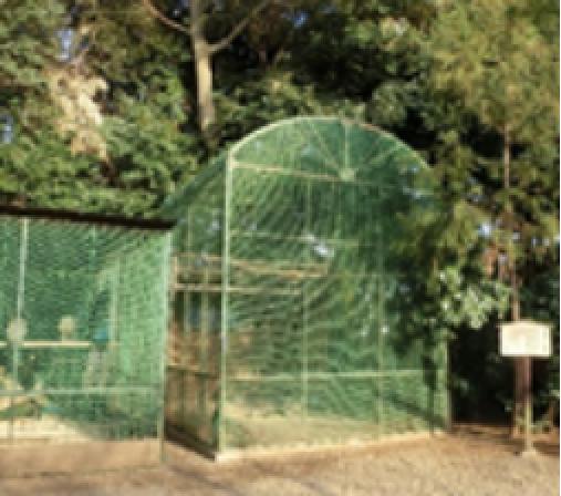寄贈されたままの形が残る鳥舎