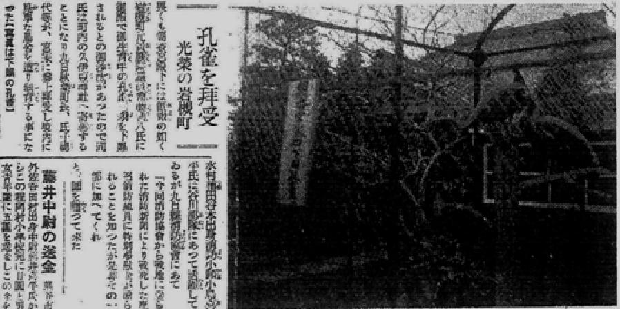 孔雀奉納を伝える新聞記事「孔雀を拝受 光栄の岩槻町」昭和13年3月10日付 読売新聞